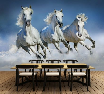 Photo wallpaper White Arabian Horses